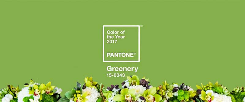 Color Of The Year-Greenery