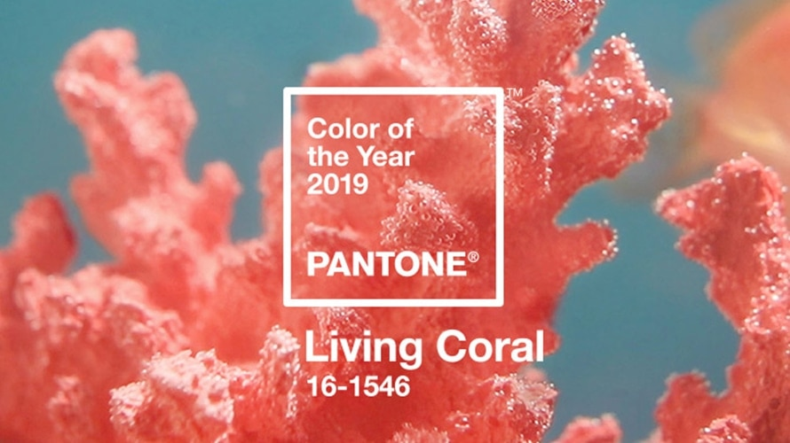 Bright Beginnings – The Pantone Color of the Year!