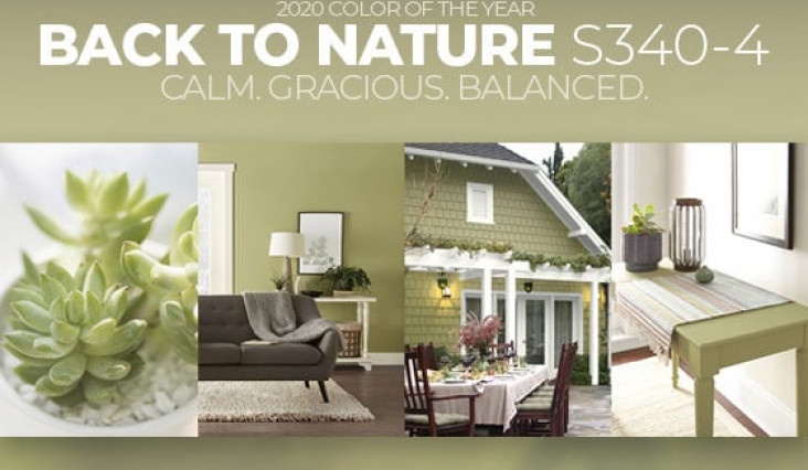 Color Crush: Back to Nature