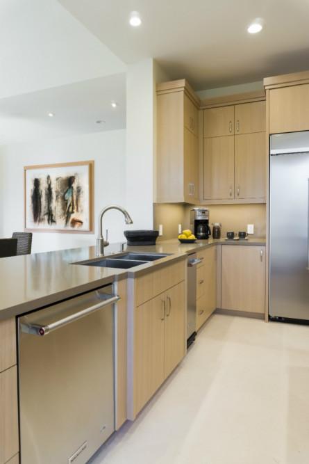 palm-springs-ca-kitchen-sink-dishwasher-kitchen-design
